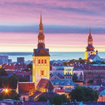 Język estoński – język niszowy